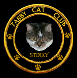 Tabby Cat Club-Stinky