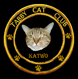 Tabby Cat Club- KaTwo