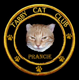 Tabby Cat Club- Prancie