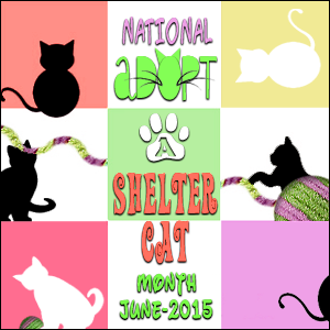 National-Adopt-A-Shelter-Cat-Month-June-2015