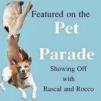 Feautured on Pet Parade